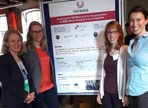 THYRAGE at DuSRA/KNAW Conference 2017 'Challenges in Translational Research to promote Healthy Ageing'