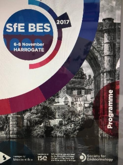 THYRAGE at SfE BES Conference 2017